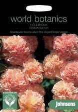 Johnsons World Botanics Flower - Hollyhock Chaters Salmon - 50 Seeds
