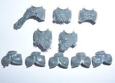 Stormcast los eternos Vanguard-cazadores Front & Back torsos X 5 – G823