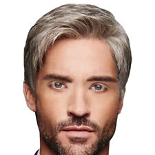 Handsome Mens Daily Natural Short Wigs Adults Male Cosplay Party Full Hair Wig