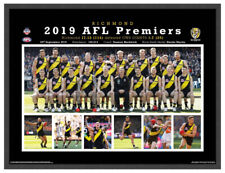 RICHMOND TIGERS 2019 AFL PREMIERS POSTER FRAMED MEMORABILIA DUSTIN MARTIN LYNCH