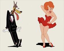 Tex Avery cartoon DVD 6 DISK SET movie film transfer Big Bad Wolf RED HOT