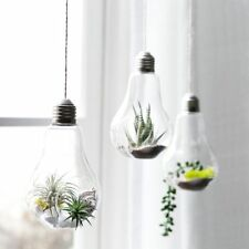 3 Pack Light Bulb Hanging Plant Terrarium Glass Vase for Succulent Air Plant