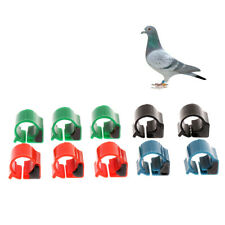 10x Pigeon Rings Bird Chip Rings Identification Race Pigeons Colorful Ring