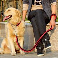 Collier + laisse pour chien en corde de nylon tressée avec boucle acier inox