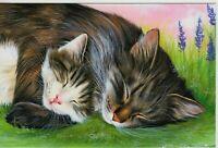 CAT ART Cute Tabby Cat and Kitten Sleep Hug by Garmashova NEW Russian Postcard