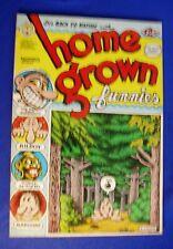 Robert Crumb Home Grown Funnies . Underground. Licensed 1971 Dutch edn.Eng text.