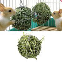 1pc Stainless steel rabbit feeder ball animal bunny hay grass shelf rack toy V+P