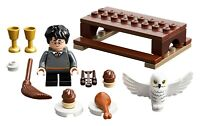 LEGO 30420 HARRY POTTER AND HEDWIG OWL DELIVERY BUILDING SET 31 Pieces New
