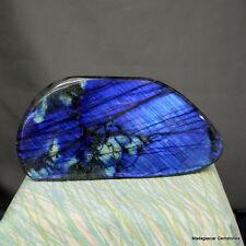 """6.30"""" Gorgeous Royal Blue Labradorite Spectrolite Freeform Stone, Lab225"""