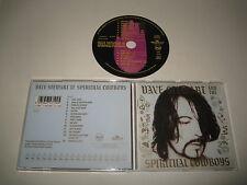 DAVE STEWART ESPIRITUAL COWBOYS/DAVE STEWART ESPIRITUAL COWBOYS(BMG/PD74710)CD
