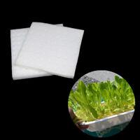 DV/_ 100Pcs Soilless Hydroponic Seed Nursery Plant Pot Sponge Cultivation Tray No