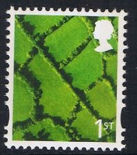 GB QEII MNH Northern Ireland SG NI95 1st Patchwork Fields Regional Definitive