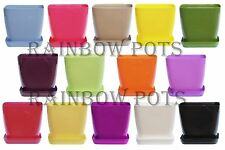 Decor Square Flower Pots 14 Colours Gloss Plastic Plant Pots Planter Saucer