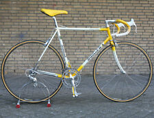 Vintage 1988 Gazelle Champion Mondial AA Special Campagnolo Chorus bicycle