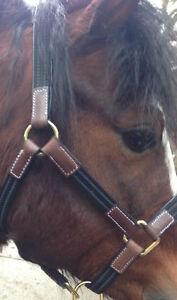 Headcollar/ halter , PONY lightweight, leather & webbin  Black