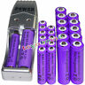12 AA 3000mAh+ 12AAA 1800mAh 1.2V NI-MH purple Rechargeable Battery +USB Charger