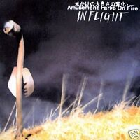 "AMUSEMENT PARKS ON FIRE In Flight UK vinyl 12"" UNPLAYED"