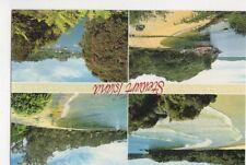 Stewart Island New Zealand 1998 Postcard 476a