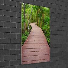 Wandbild Kunst-Druck auf Hart-Glas senkrecht 50x100 Pfad Dschungel