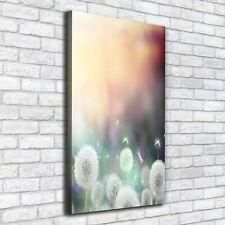 Leinwand-Bild Kunstdruck Hochformat 50x100 Bilder Pusteblume