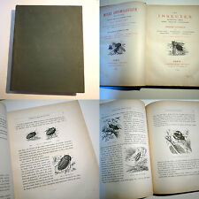 les Insectes - ed. Rothschild 1878 - 24 planches réhaussées / entomologie