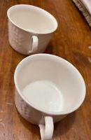☕️USED Set of 2 Mikasa ENGLISH COUNTRYSIDE Tea Cups White