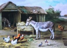Vintage art Donkey Chickens Pigeons in Farm Yard by Edgar Hunt