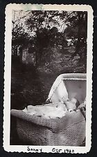 Old Vintage Antique Photograph Adorable Baby Laying in Old Time Wicker Carriage