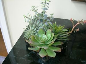 NDI Faux Floral Arrangement Succulents in Acrylic Water Multicolor Rock Bed  #2