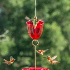 Droll Yankees (AM) Ant Moat Hummingbird Feeder Accessory