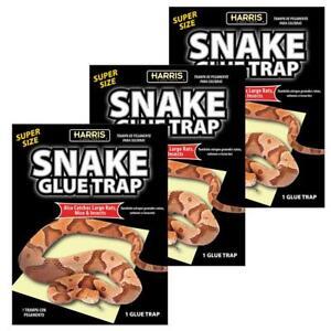 Harris Snake Glue Trap Super Size (3-Pack)