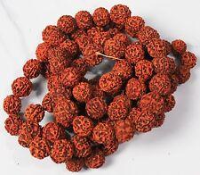 Rudraksha Beads Meditation Mala Ayurvedic Medical Advantages AU Free Shipping