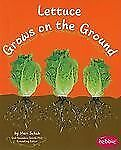 How Fruits and Vegetables Grow Ser.: Lettuce Grows on the Ground by Mari...