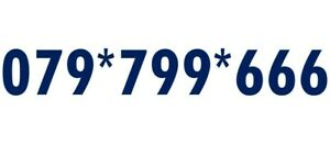 GOLD VIP BUSINESS EASY REMEMBER MEMORABLE MOBILE NUMBER SIM CARD 666