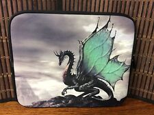 "Electronics carrying case suitable for full size Ipad ""Flying Dragon"" new H24"