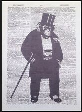 Vintage Chimpanzee Dictionary Print Page Wall Art Picture Monkey Animal Suit