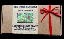 Grow Your Own SCOTCH BONNET CHILLI -complete kit - Great Gift