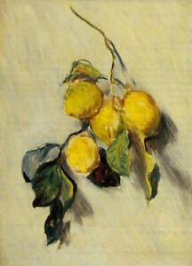 Full Drill Diamond Painting Kit Claude Monet Branch of Lemons 1883 Painting