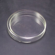Petri dishes with lids clear glass 150mm lot5