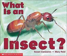 What Is An Insect? Emergent Readers