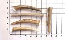 Deer & Elk Antler Chews - Five (5) Piece antler treat for small dogs dog bones