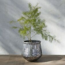 1 Indian Silver Metal Planter, Boho Rustic Orchid Reha Plant Pot Holder Vase