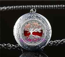 Celtic Tree Of Life Photo Glass Tibet Silver Chain Locket Pendant Necklace