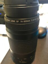 Canon EF 75-300mm f/4-5.6 IS II Telephoto Zoom Camera Lens