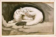 ANIMALS  POLECAT FACING RIGHT IN BURROW ENGLISH SCHOOL INK/WASH C1810