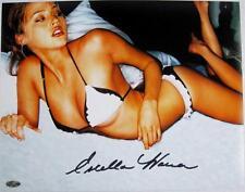 Estella Warren Signed 11x14 Photo Victoria Secret Model Beauty & The Beast F