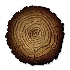Tim Holtz Sizzix Die ~ TREE RINGS ~ Bigz/Texture Fades ~ 662429