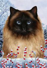 Winter Garden Flag - Himalayan Cat 159521