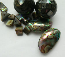 14 Paua Shell Beads, assorted for Jewellery Making/Crafts