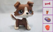 Littlest Pet Shop No # Chocolate Collie Dog +1 FREE Access Authentic minor wear